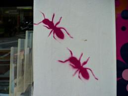 #0027 Ants