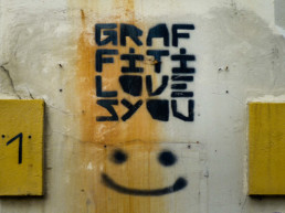 #0047 - Graffiti loves you