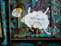 #0100 Sleeping Sheep