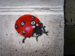 #0103 Ladybird