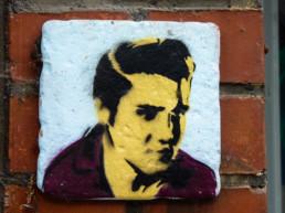 #0160 Elvis & the Ladybug