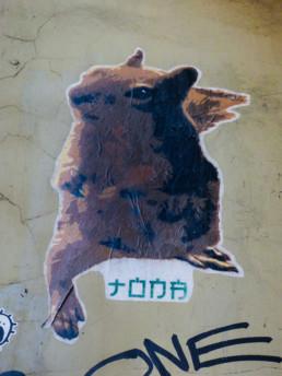 #0184 Squirrel