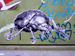 #0186 Bug