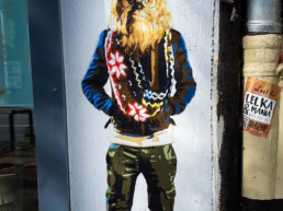 #0242 Hipster-Chewbacca