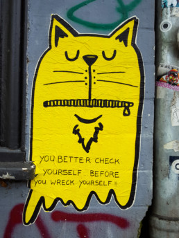 #0243 Better check yourself
