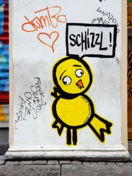 #0252 Schizzl