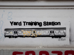 #0293 Yard Training Station