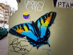 #0405 Blue Butterfly