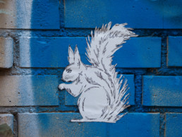 #0466 White Squirrel